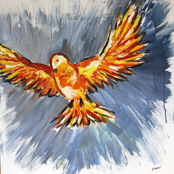Fire Dove